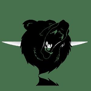 Bärenkopf symbolisiert den Bärenmarkt